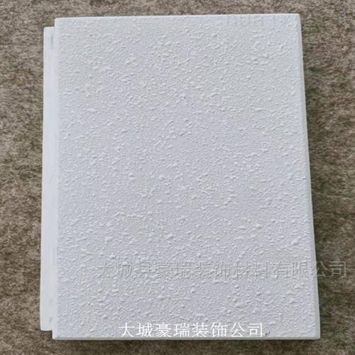 忻州市暗插巖棉吸音天花板多功能廳